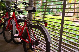 Бесплатные велосипеды